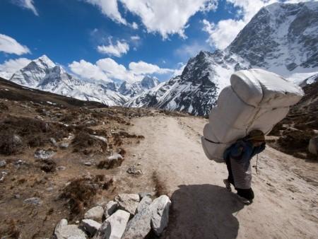 back pain sherpa