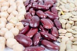 beans photo 2