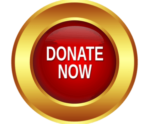 """donate button with gold circle around a red circle with the words """"donate now"""" in the centter"""