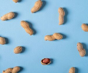 peanut allergies highlights from Amy Burkhart MD RD