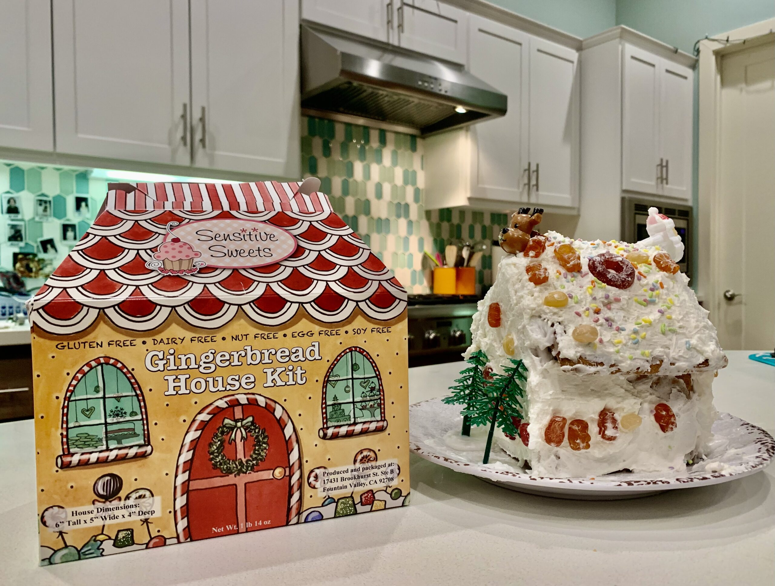 gluten free bakery gingerbread house kit sitting on counter